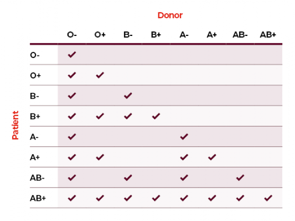 Matching blood groups | Australian Red Cross Lifeblood